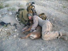 The IDF's dog soldiers in the Oketz unit are a valued part of Israel's defense forces. Screen shot 2012-08-08 at 10.58.13 PM