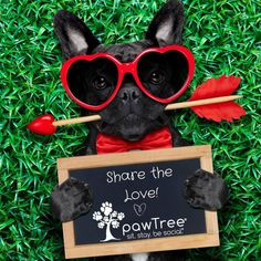 Share your LOVE STORIES and you could WIN!! CLICK THE LINK TO ENTER: https://multibra.in/7q56r In honor of our Share the Love - Buy 1, Get 1, Give 1 event - we'd LOVE to hear what makes you & your pet such a PAWsome team! Submit a photo, tell your LOVE story, get votes, and, if you win, give the gift of healthy treats! Keep them for your pet or give them to a friend or local shelter! WIN!!  - pawTreats for a YEAR! - All 5 flavors of pawPairings Superfood Seasoning  - Be featured in our…