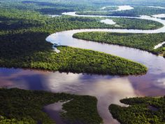 Tributary of Amazon, snaking river folds