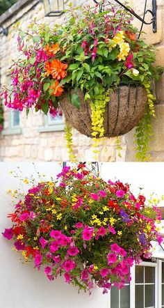 How to plant beautiful hanging baskets that last for months. Choose the best plants from these 15 designer plant lists for hanging flower baskets in sun or shade, plus easy care tips on soil, water and fertilizer for a healthy hanging basket! - A Piece of Hanging Plants Outdoor, Plants For Hanging Baskets, Outdoor Flowers, Hanging Flowers, Diy Hanging, Diy Flowers, How To Plant Flowers, Flowers Garden, Winter Hanging Baskets