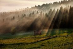 Morning mist in Paltinu, Suceava, Bucovina, Romania (by Sorin Onisor) Romania, Mists, Country Roads, Places, Painting, Colors, Painting Art, Paintings, Colour