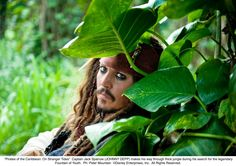 """Jack Sparrow...there should be a """"Captain"""" in there somewhere."""