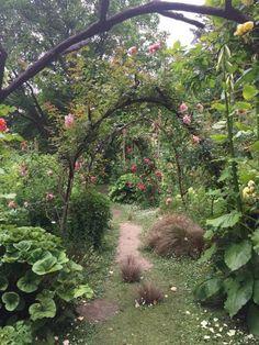 A Hobbit's Garden