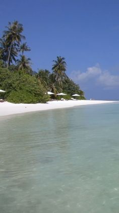 Here's the ultimate list of the best Maldives resorts for your next tropical vacation. Which Maldives resort is perfect for you? Find out now. Best Resorts In Maldives, Tropical Beach Resorts, Tropical Beach Houses, Maldives Beach, Maldives Resort, Beautiful Places To Travel, Most Beautiful Beaches, Romantic Travel, Beach Gardens
