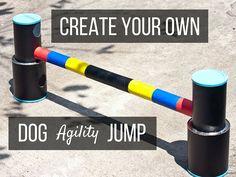 diy agility jump