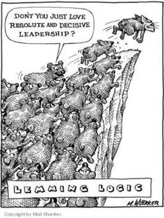 Image result for lemmings going off the cliff