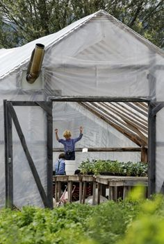 In this July 13, 2011, photo, Amish children help out with chores in a greenhouse in Centerville, N.Y.