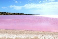 Lake Retba also known as Lac Rose is located in the north of the Cap Vert peninsula of Senegal. The lake is most famous for its pink color and also for its high salt content; resulting people stay ...