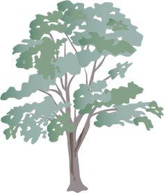 Eucalyptus or Gum Tree Silhouette Australia | Tattoos and ...