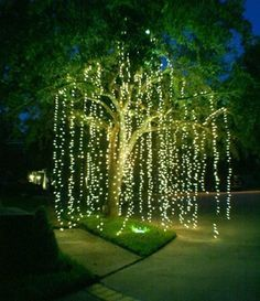 AD-Amazingly-Pretty-Ways-To-Use-String-Lights-8---Using string lights for a willow tree effect is always a hiti.