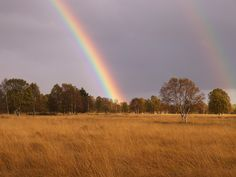 Double rainbow in the National Reserve Park of the Hautes Fagnes in Belgium