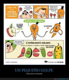 ¿Sabes diferenciar entre las frutas y las verduras? ¿SEGURO? - Para saciar tu curiosidad