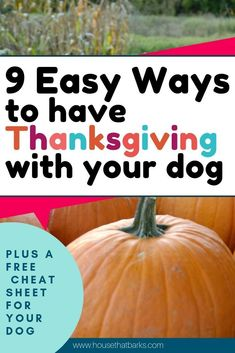 FREE Printable and Recipe to Enjoy Thanksgiving with your dogthanksgiving dogs with dogs for dogs and thanksgiving food food recipes recipes Make Dog Food, Wet Dog Food, Homemade Dog Food, Homemade Recipe, Dog Treat Recipes, Dog Food Recipes, All Natural Dog Food, Pet Turkey