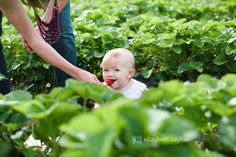 Elizabeth Cayton Photo & Film 2015 Portrait Photography, Eastern NC Family Photographer, Strawberry Farm