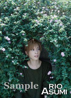 Asumi Rio, Special DVD Box Clearfile [x]