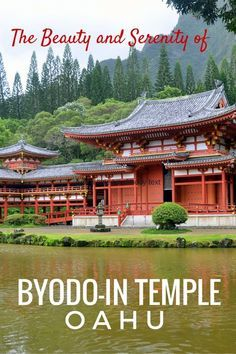 See an attraction away from the tourists! Byodo-in Temple in Oahu, Hawaii with kids. Things to do in Oahu.