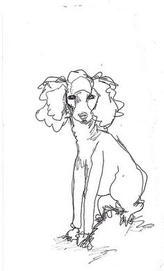 poodle doodle in continuous line