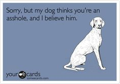 Sorry, but my dog thinks you're an asshole, and I believe him. | Apology Ecard | someecards.com