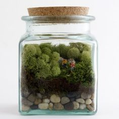 DIY Terrarium with Two Hikers