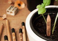 Creioane Sprout -- Verde pentru verbe!   Smuff — Magazinul de traznai