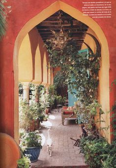 Hacienda in Andalucia