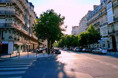 Part 3 in our series on The History of Trees in Paris!