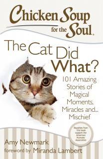 Chicken Soup for the Soul The Cat Did What? Giveaway US/CAN - Tales of a Ranting Ginger