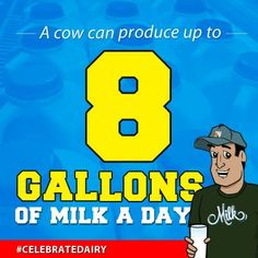 Dairy cows are hardworking ladies!