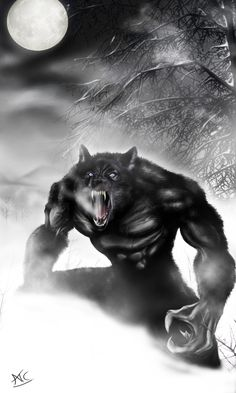 Werewolf PS by Scribbletati on DeviantArt