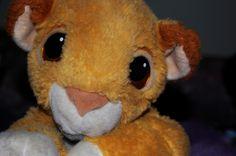 My very well loved Simba. lol