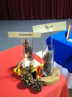 Scout centerpieces from Eagle Court of Honor. Thank you to www.marqueerents.com for the linens and www.bouquetsofaustin.com for the wood, glass and birch so I could create a woodsy feel for the table.