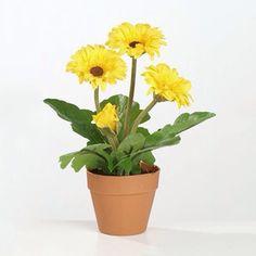Leuke kunstplanten,  Mooie gele gerbera's  Gemeten met het potje zijn deze kunstplanten 24 cm hoog.  Deze leuke kunstplanten kunnen worden besteld in onze webwinkel www.rodebeagle.nl