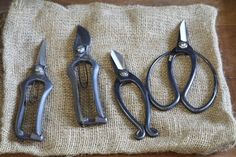Pruning Tools to Last a Lifetime