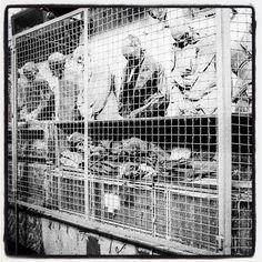 Catacombe dei Cappuccini Palermo... #catacombe #blackandwhitephotography #blackandwhitephoto #blackandwhite #streetphoto_bw #bws_worldwide #blancheetnoir #blacknwhite #bnw_lover #bnw_life #bnw_city #bnw #bw #blancoynegro #travel #palermo #sicilia #sicily