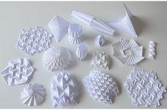 biomimétisme - Alizée Cugney