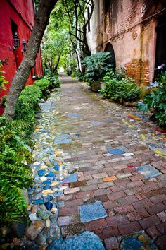 A brick pathway (like Dorothy's yellow brick road) to guide you through the struggles you are going through. I would put it by the garden.