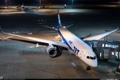 All Nippon Airways - ANA JA815A Boeing 787-8 Dreamliner aircraft picture