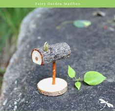 Best diy miniature fairy garden ideas (60)