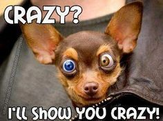 Crazy???