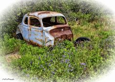 https://flic.kr/p/HmGuij   The Old Abandoned Coupe   OLd coupe in a field of flowers in Oklahoma.
