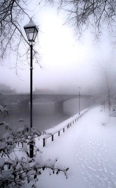 Snowy day ~ Paris