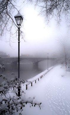 Paris Winter Wonderland