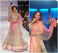Yay or Nay : Madhuri Dixit in Anushree Reddy for Jhalak Finale