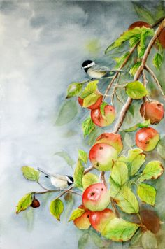 Watercolor of chickadees on an apple branch by TivoliGardens