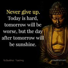 Best Buddha Quotes, Buddha Quotes Life, Buddha Quotes Inspirational, Buddha Wisdom, Buddhist Quotes, Inspiring Quotes About Life, Spiritual Quotes, Positive Quotes, Motivational Quotes