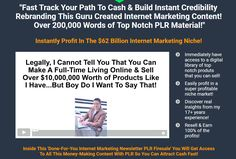 Get the PLR to resell 12 professionally formatted Internet marketing newsletters complete with videos, audios, and transcripts! This is the ultimate multi-media PLR bundle!    12 Done For You Internet Marketing Newsletters With PLR ($3,600 Value)  12 'Closed-Door' Marketing Sessions In Crystal Clear Audio With PLR ($1,200 Value)  12 'Closed-Door' Marketing Session Transcripts With PLR ($900 Value)  119 Turnkey Newsletter Audio Articles With PLR ($5,950 Value)  119 Ready To Upload Videos From…