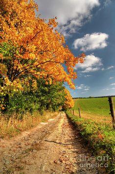 autumn landscape | ... Autumn Landscape Photograph - Country Road And Autumn Landscape Fine