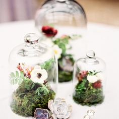 If you're looking for a unique wedding décor idea here are terrarium wedding ideas for rustic to romantic wedding from terrarium wedding favors to wedding centerpieces Terrarium Centerpiece, Jar Centerpieces, Wedding Centerpieces, Wedding Decorations, Table Decorations, Centerpiece Ideas, Terrarium Table, Terrarium Ideas, Succulent Centerpieces