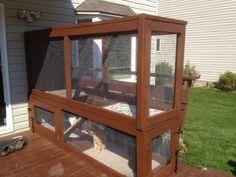 Our new Cat Enclosures