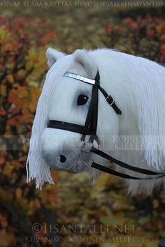 Stick Horses, Hobby Horse, Anastasia, Crafts, Diy, Animals, Manualidades, Animales, Bricolage